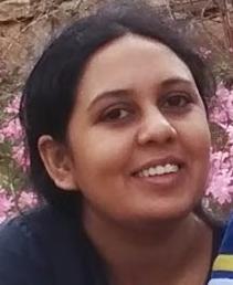 Srujana Merugu, Independent machine learning researcher