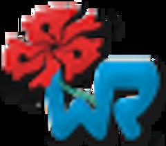 WR Web Design