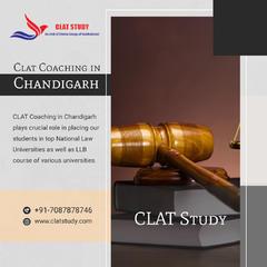 DIVINE CLAT STUDY - CLAT Coaching Institutes in Chandigarh