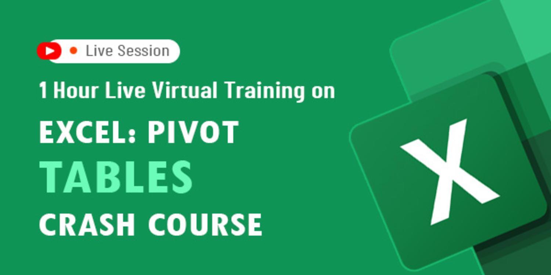 1 Hour Live Virtual Training on Excel: Pivot Tables Crash Course